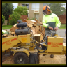 stump grinding trees oregon