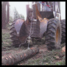 logging thinning loggers trees oregon